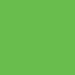 MTN NITRO 2G COLOR - Guacamole Green